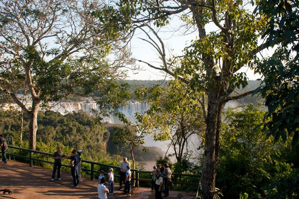 Parque Nacional do Iguaçu (Foto: Cristiane Kaiser)