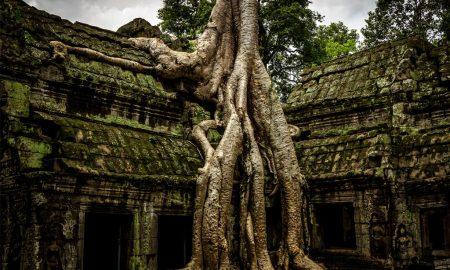 Templo Angkor Wat – Camboja