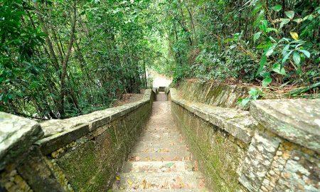 Floresta da Tijuca - Escada na Mesa do Imperador (Foto: Leonardo Shinagawa)